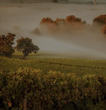 Kom proeven bij wijnimporteur Laurent Richard Pere et Fils