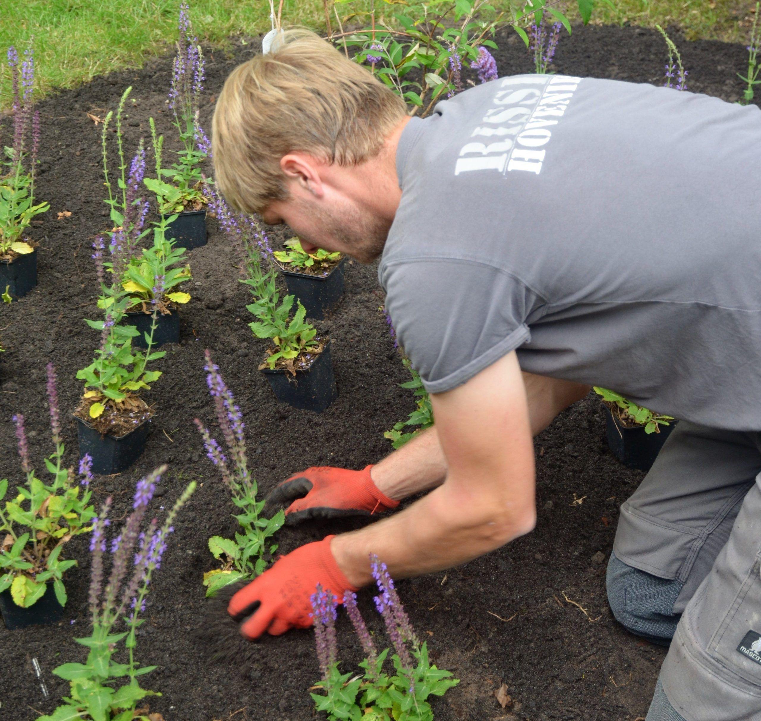 Rissik Hoveniers bouwen mooie tuinen tijdens Exclusive Spring Fair in Baarn