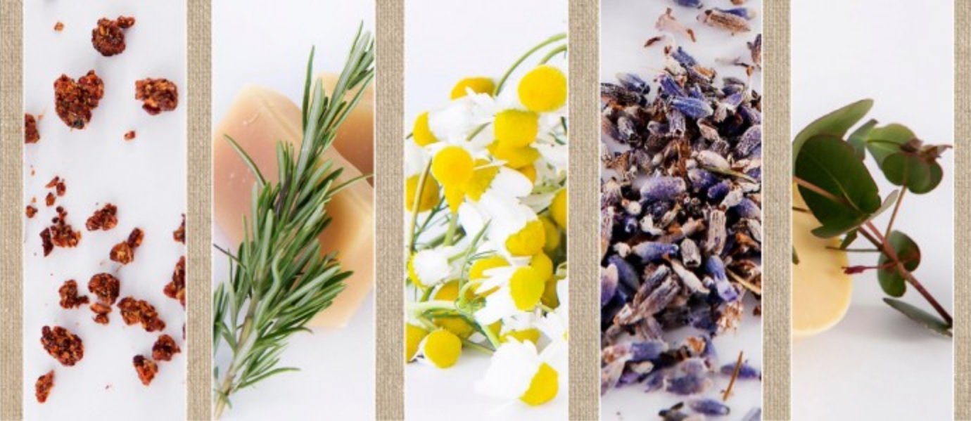 Natuurlijke handgemaakte huidverzorgingsproducten van Bioteck op de voorjaarsbeurs in Baarn